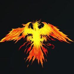 phoenix addon